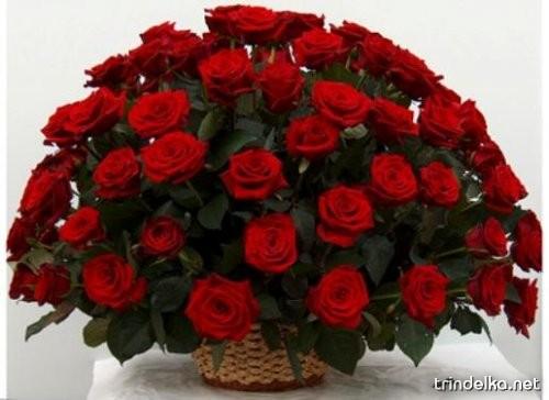 1253987426_korzina-cvetov.jpg