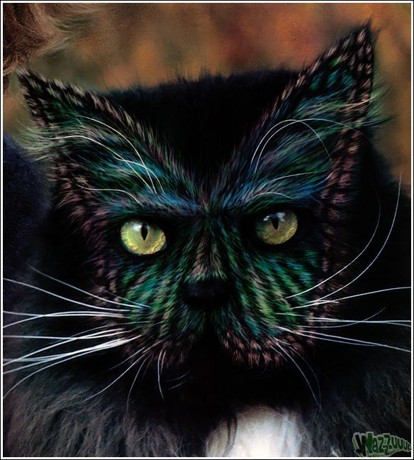 Paintcat_37.jpg