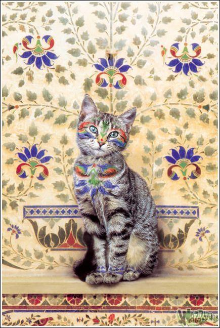 Paintcat_04.jpg