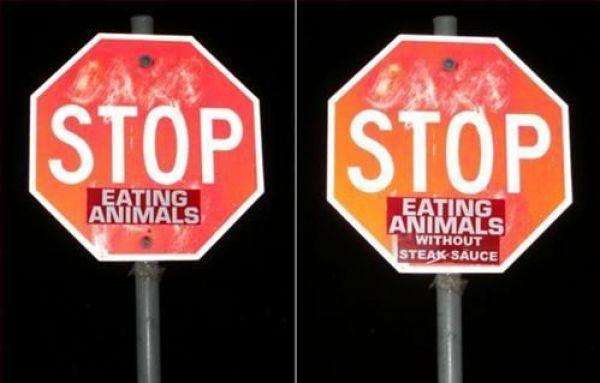 stop-eating-animals.jpg
