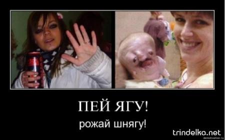 1279997342_7_135.jpg