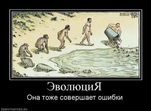 1271338648_60833_evolyutsiya.jpg