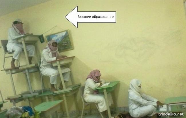 образование.jpg
