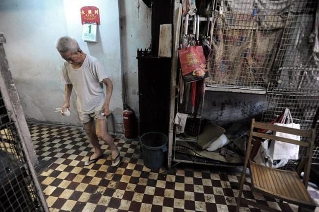 Жизнь китайцев в клетках в Гонконге Thumb_78_80a0ce1be81e1418eb3e593e58c02fa5