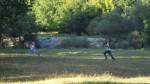 Они очень быстро побежали в кусты
